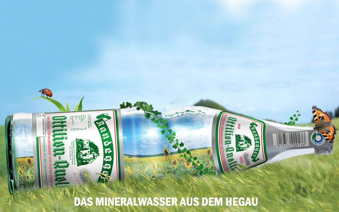 Randegger Ottilien-Quelle GmbH